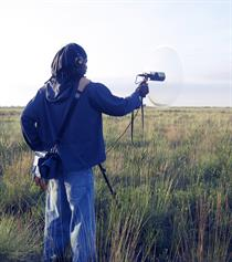 Field recording with a Telinga